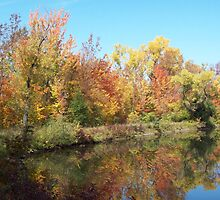 Autumn Color Reflections by Marcia Plante