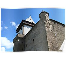 medieval castle against the sky Poster