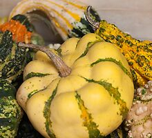 a beautiful pumpkin by spetenfia