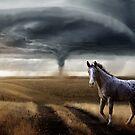 Praire Wind by Cliff Vestergaard