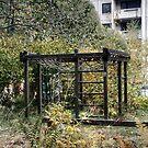 10.10.2014: Abandoned Playground by Petri Volanen