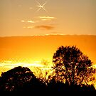 Sunset Stars by ©The Creative  Minds