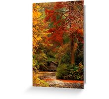 Autumn in the Dandenongs  Greeting Card
