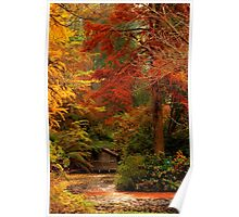 Autumn in the Dandenongs  Poster