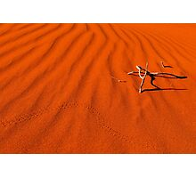 Red Dune Photographic Print