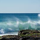 Splashback by Jenny Dean