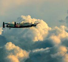 Good Night Vera! by Colin Smedley