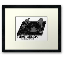 American Hip Hop - Turtablism Framed Print