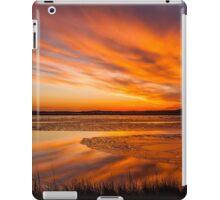 Reflections on a January thaw iPad Case/Skin