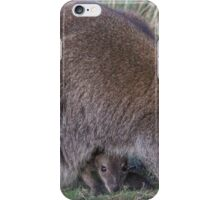 Wallaby and curious joey iPhone Case/Skin