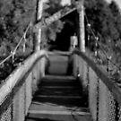 little bridge by Savannah Regier