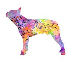 Boston Terrier 5 by Watercolorsart