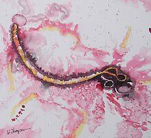 Ebola by Warren  Thompson