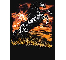 Charlie Always Sunny Horse T-shirt Photographic Print