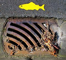 Yellow Fish © by Ethna Gillespie