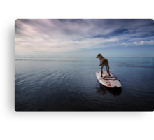 Owning the day Canvas Print