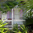 Tropical Garden  by John  Kapusta