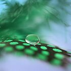 Green feather drop by Lyn Evans