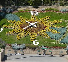 A flower garden clock that actually works... by DonnaMoore