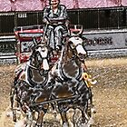 Driving Horses by photobylorne