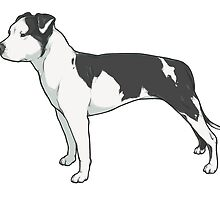 Staffordshire Terrier (black and white) by heyletsart