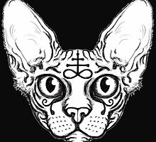 Sphinx Cat by ShayneoftheDead