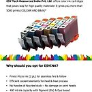 ECO-FRIENDLY ESYINK CISS Kits by Infographics