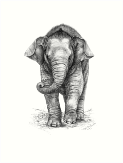 Baby Elephant G046 by schukinart