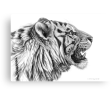 White Tiger profile G01 by schukina Canvas Print