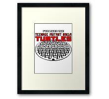 Iv'e liked the Teenage Mutant Ninja Turtles since they were UNDERGROUND Framed Print