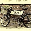 Bakers Bike by Country  Pursuits