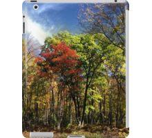 Fall Abstract Elk County iPad Case/Skin