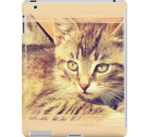 Retro Kitten Photo 2 iPad Case/Skin