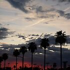 Gorgeous in Glendale by down23