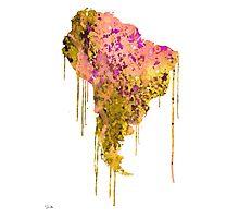 South America Photographic Print
