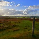 Exmoor: Path Across the Moor by Rob Parsons