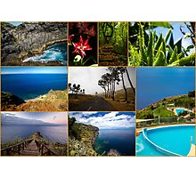 Collage from Portugal (Madeira) - Travel Photography Photographic Print