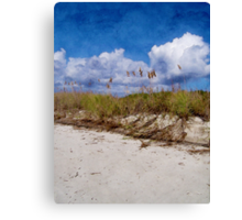 Southern Sands Canvas Print