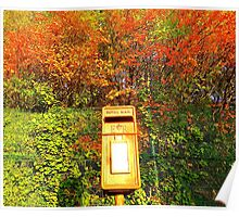 Mail Box And Autumn Leaves Poster