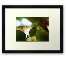 Just a Glimpse Framed Print