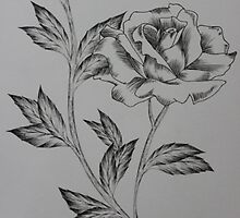 Simple ink rose with line work by kkirstind