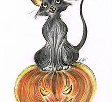 Elma's Pumpkin by Teresa White