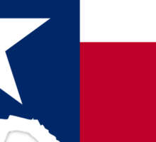 Texas | Flag State | SteezeFactory.com Sticker