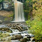Thornton Force, Ingleton by Stephen Knowles