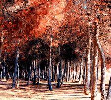 Autumn hues by missmoneypenny