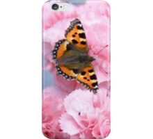 Pinks and the papillon iPhone Case/Skin