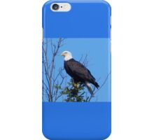 Wild Bald Eagle iPhone Case/Skin