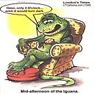 Mid-Afternoon Of The Iguana by Rick  London