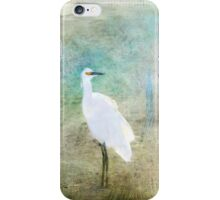 Fanciful and Free iPhone Case/Skin