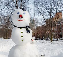 Snowbound Red Sox Fans by Owed to Nature